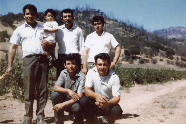 "Robledo's grandfather Everardo Robledo ""Papa Lalo"" (kneeling front, left) is pictured here in the only photo she has of him. By the time the photo was taken (the 1960s), the Robledo's were known as master grafters in the wine industry and were sought-after in the new development of vineyards."